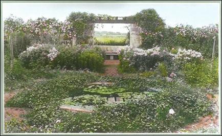 GardenScan 3